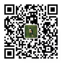 QQ图片20200529151006.png